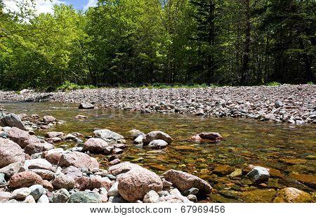 Cape Breton Stream