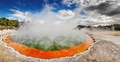 pic of thermal  - Champagne Pool in Waiotapu Thermal Reserve - JPG