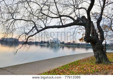 Washington DC, Jefferson Memorial in autumn