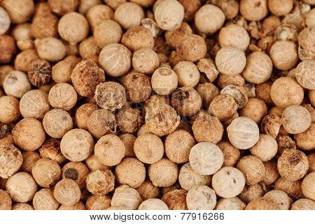 Close Up White Pepper  As Background