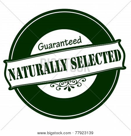 Naturally Selected Stamp