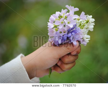 childs hand with flowers