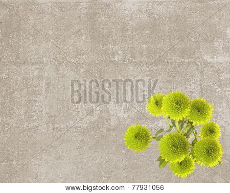 Vintage Texture With Green Button Mums