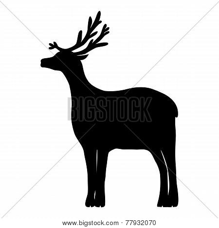 Reindeer Isolated On White Background