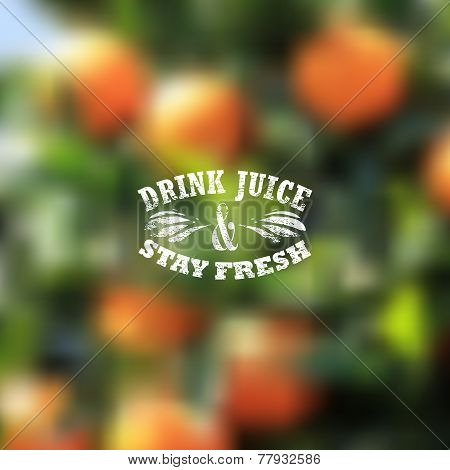 Quote typographical label on blurred background of orange grove, vector design. Drink juice and stay