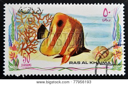 RAS AL-KHAIMAH - CIRCA 2006: A stamp printed in Ras al-Khaimah shows a fish Chelmon rostratus Copper
