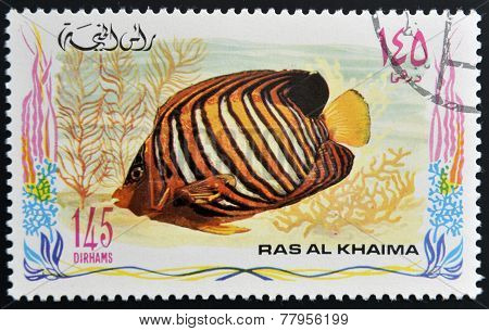 RAS AL-KHAIMAH - CIRCA 2006: A stamp printed in Ras al-Khaimah shows a fish Pygoplites diacanthus