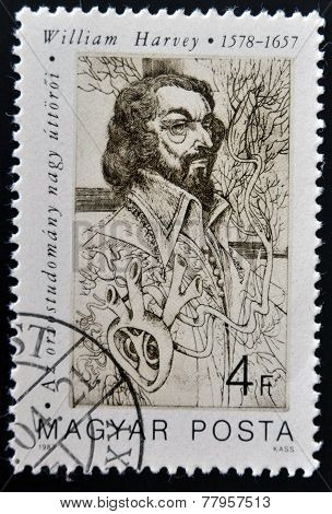 HUNGARY - CIRCA 1987: A stamp printed in Hungary shows portrait of William Harvey
