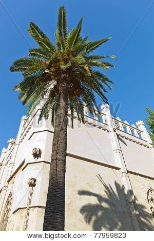 Old Bastion Of Sant Pere In Palma