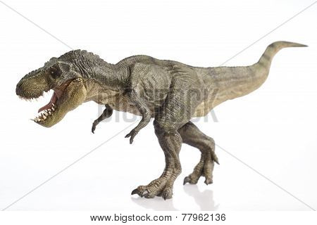 Isolated Dinosaur On White Background