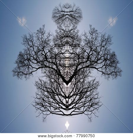 Silhouetted Tree Pattern