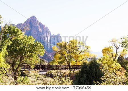 Autumn In Zion National Park