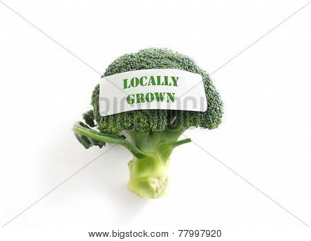 Local Veggie