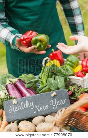 Healthy New Year against fresh vegetables at farmers market
