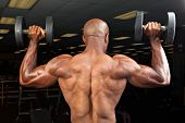 stock photo of muscle builder  - Strong back and shoulders on a ripped lean muscle fitness man lifting weights - JPG
