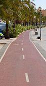 foto of bike path  - Bike path on the promenade of Palma de Mallorca Spain - JPG