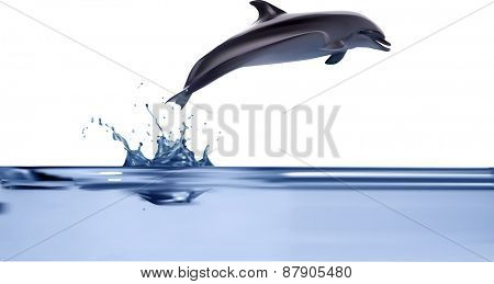 illustration with dolphin jumping from water isolated on white background