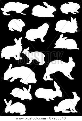 illustration with hare silhouette collection isolated on black background