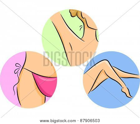 Illustration of Different Parts of the Body Commonly Shaved by Women