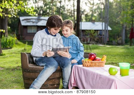 Smiling siblings using tablet computer while sitting on chair at campsite