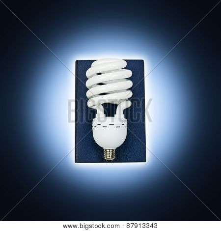 Lightbulb book
