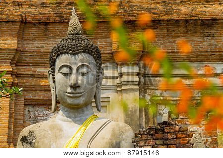 Statue Buddha And Background