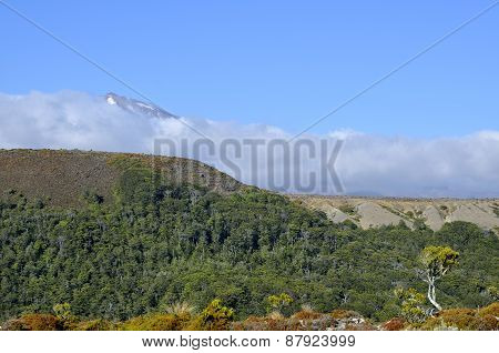 Mount Ruapehu Landscape, New Zealand