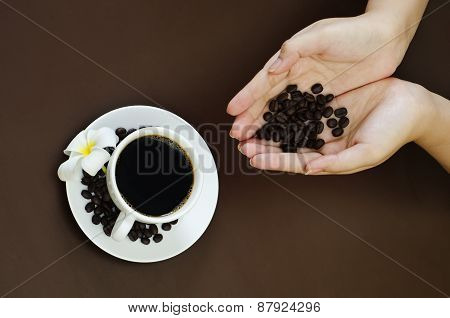 holding coffee bean