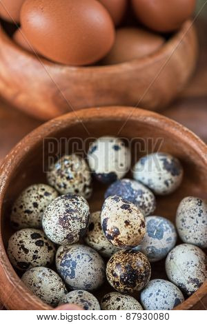Fresh chicken eggs and quail eggs at wooden plate closeup