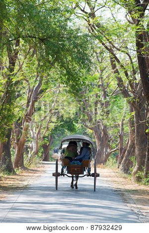Horse-drawn Carriage In Inwa, Myanmar