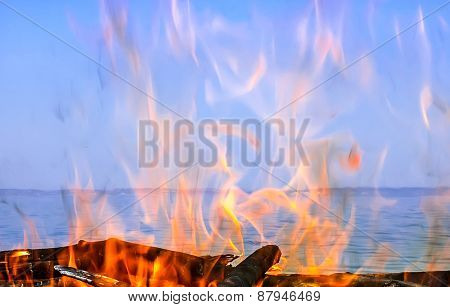 Fire Of Wood On The Coast