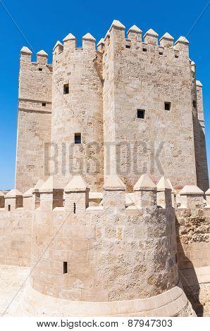 The Calahorra Tower In Spanish Cordoba