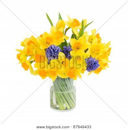 Bouquet of fresh narcissus and hyacinths isolated over white