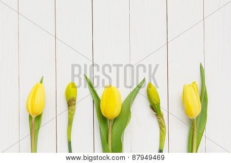 Yellow spring flowers over white wooden table