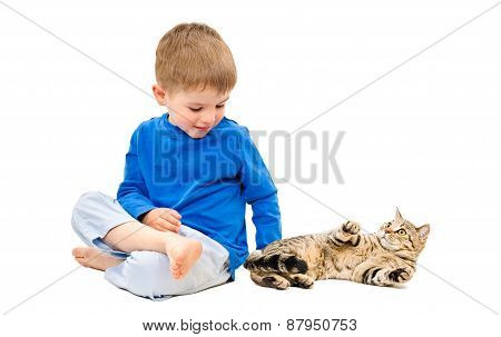 Cute boy playing with a cat Scottish Straight