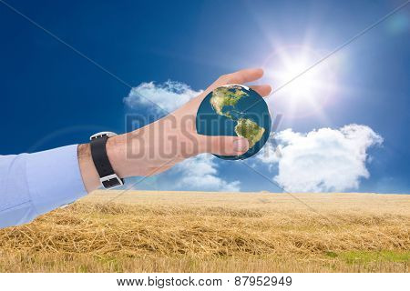 Businessman showing with his hand against sunny brown landscape