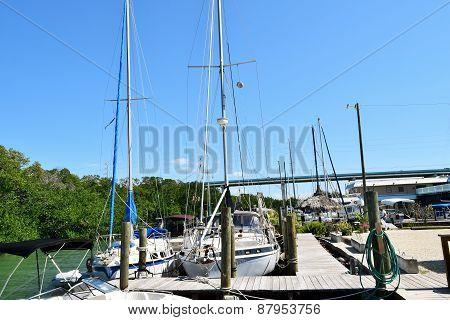 Florida Marina