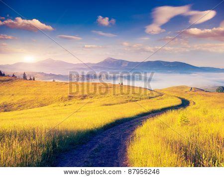Fantastic sunny hills under morning overcast sky. Dramatic scenery. Carpathian, Ukraine, Europe. Beauty world.