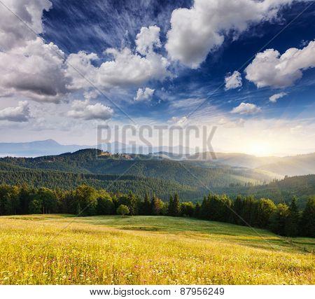Fantastic sunny day is in mountain landscape. Carpathian, Ukraine, Europe. Beauty world.