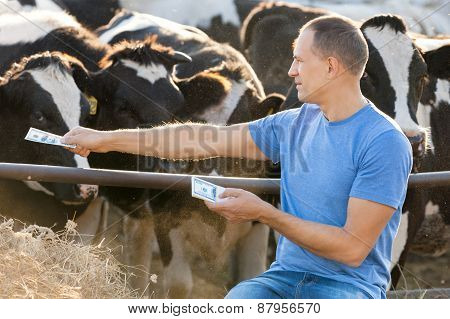 Concept  Farmer feeds animals Money