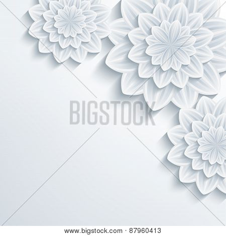 Floral Elegant Background With 3D Flower Chrysanthemum