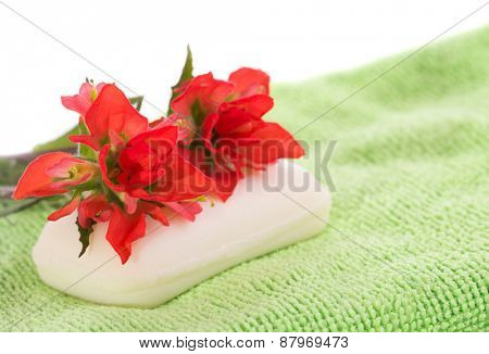 Soap on light green wash cloth, with fiery red wildflowers on top, on white background