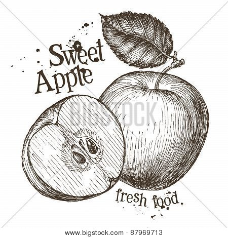 apple vector logo design template. fresh fruit, food or cooking icon.