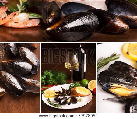 Collage From Photos Of Mussels