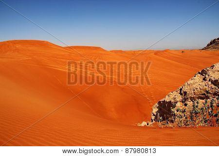 Sahara red sand desert