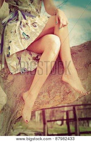 barefoot woman legs, sit on tree in romantic summer dress, retro colors