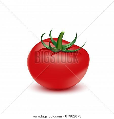 Red Fresh Tomato On White Background