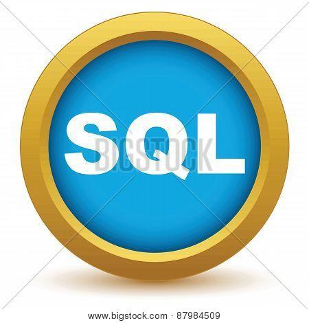 Gold sql icon