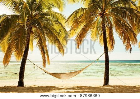Hammock between two palm trees on the beach during sunset time
