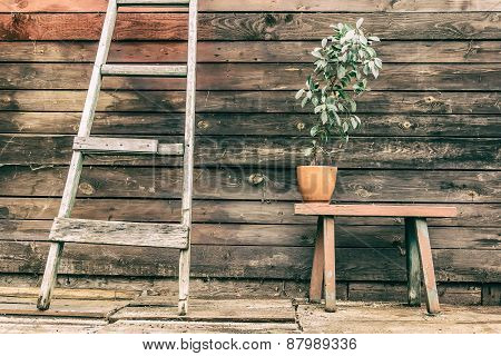 Old Wooden Bench